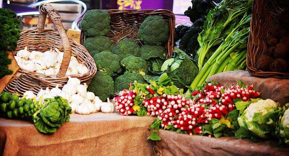 Stay Campus London Getting to Know Kentish Town Farmers Market