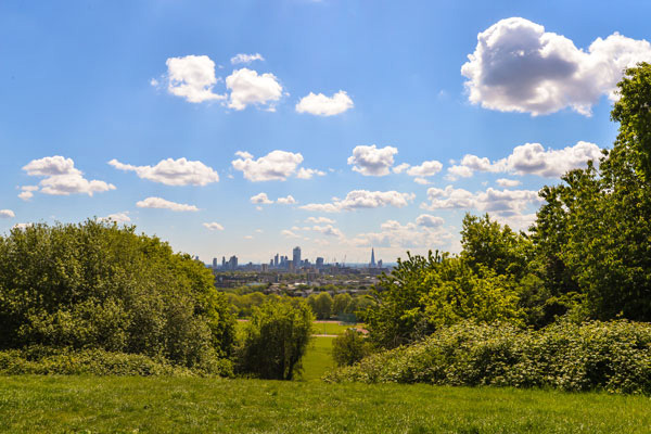Stay Campus London Getting to Know Kentish Town Hampstead Heath