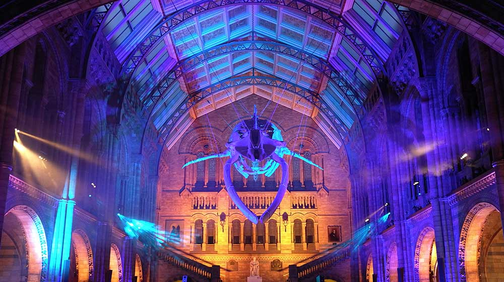 10 of the Best: Virtual Tours in London